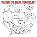 "[Muzyka] Płyty przemilczane: PJ Harvey ""The Hope Six Demolition Project"""